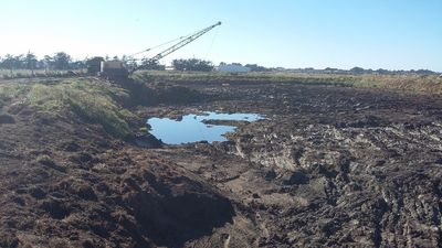 Using the dragline to clear digestive sludge